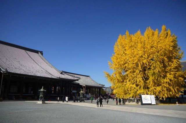th_nishihonganji4.jpg