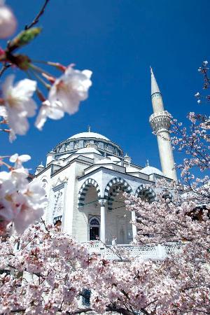 tokyo-camii-turkish-culture.jpg